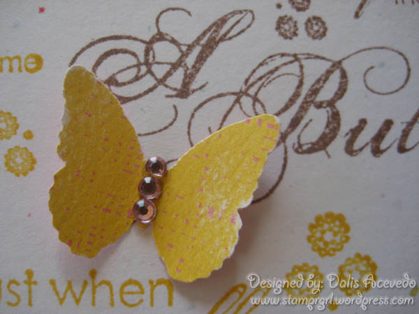 butterfly-yellow–cu1